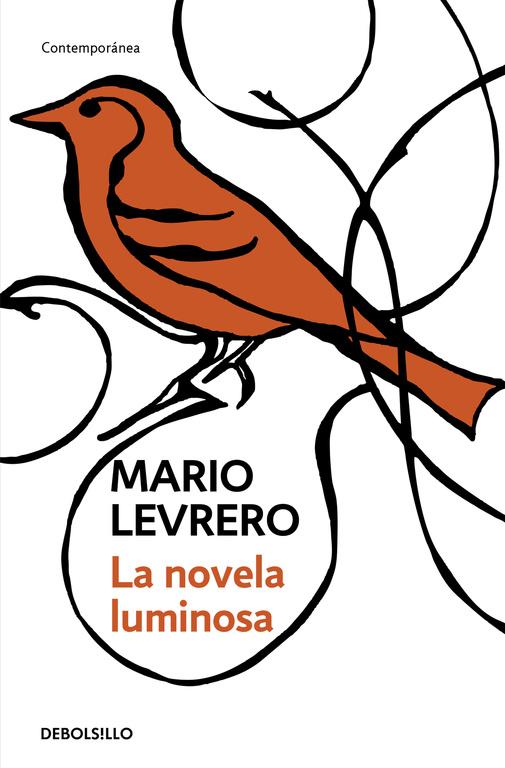 novela-luminosa-mario-levrero